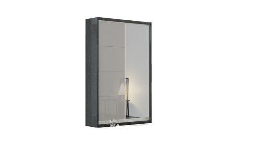 ארון בגדים עם מראה раздвижной шкаф с зеркалом